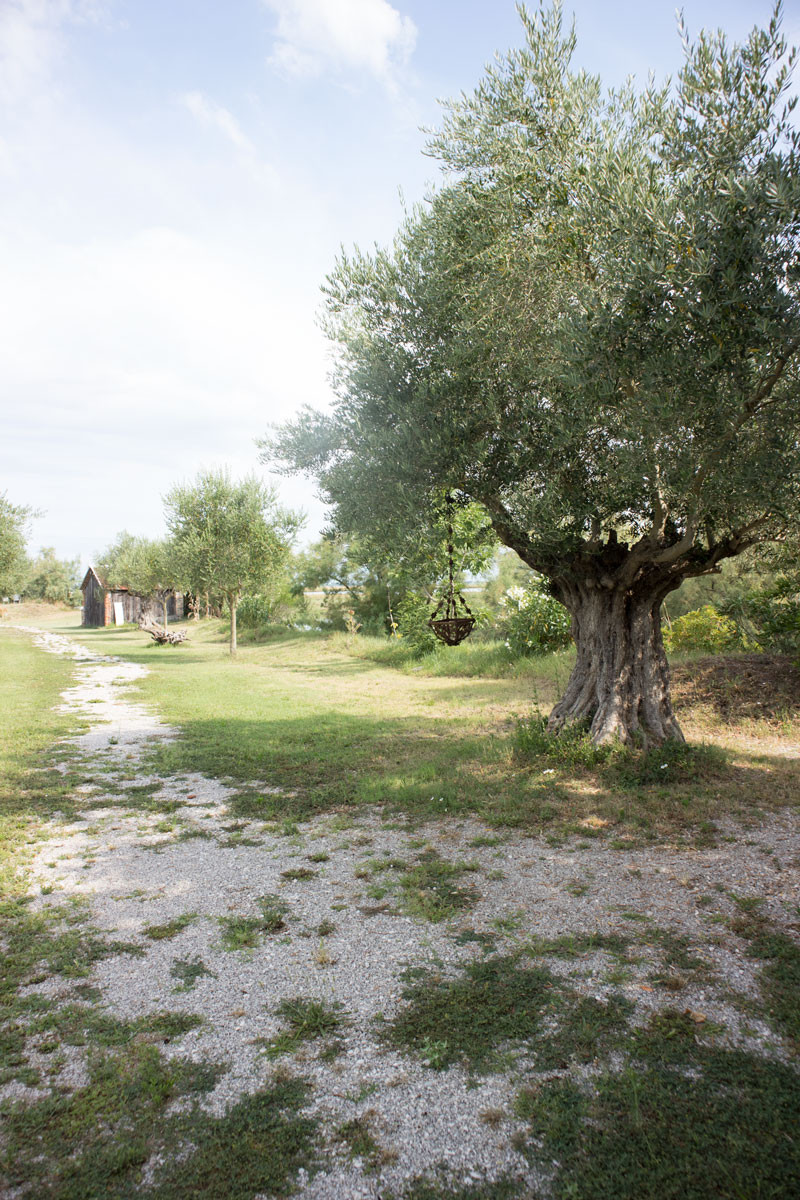 Torcello - Museo Casa Andrich