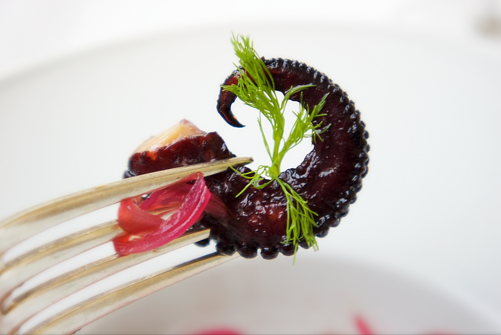 Octopus cooked in red wine, detail