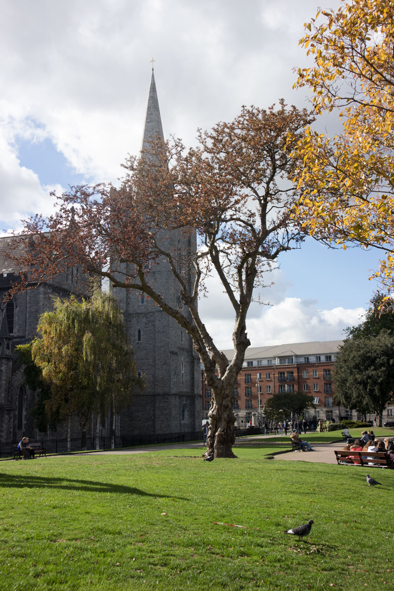Saint Patrick's Cathedral   Dublin City Travel Guide