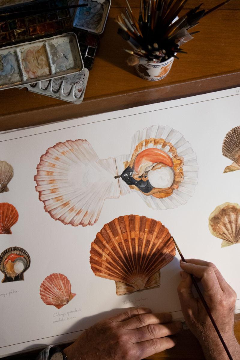 Luigi Divari | Venice watercolour artist