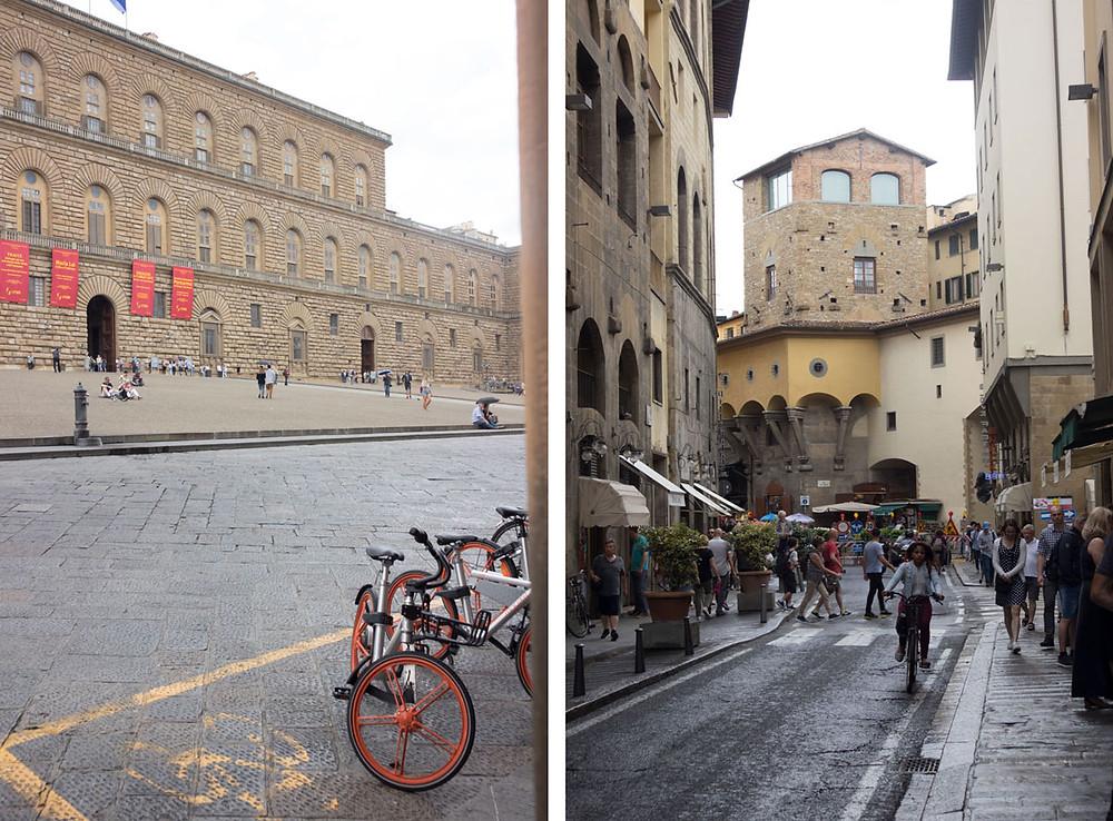 Palazzo Pitti and Ponte Vecchio | Florence (Italy)
