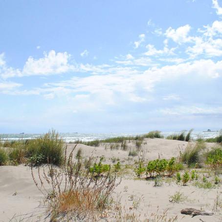 Venetian Wanderings | Episode 21: Chiosco Macondo - Alberoni beach