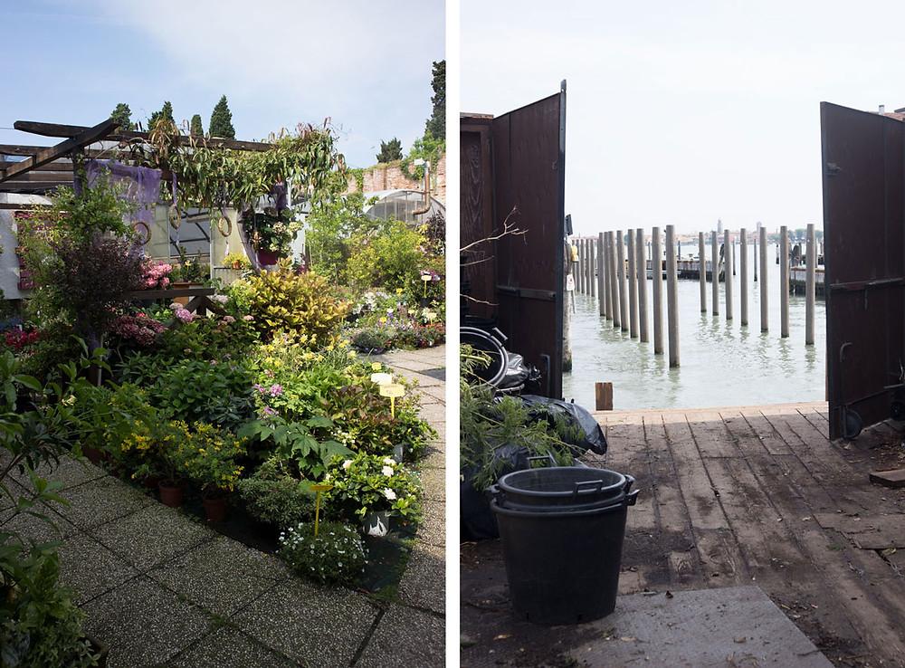 Buying flowers in Venice (Italy) | Laguna Fiorita