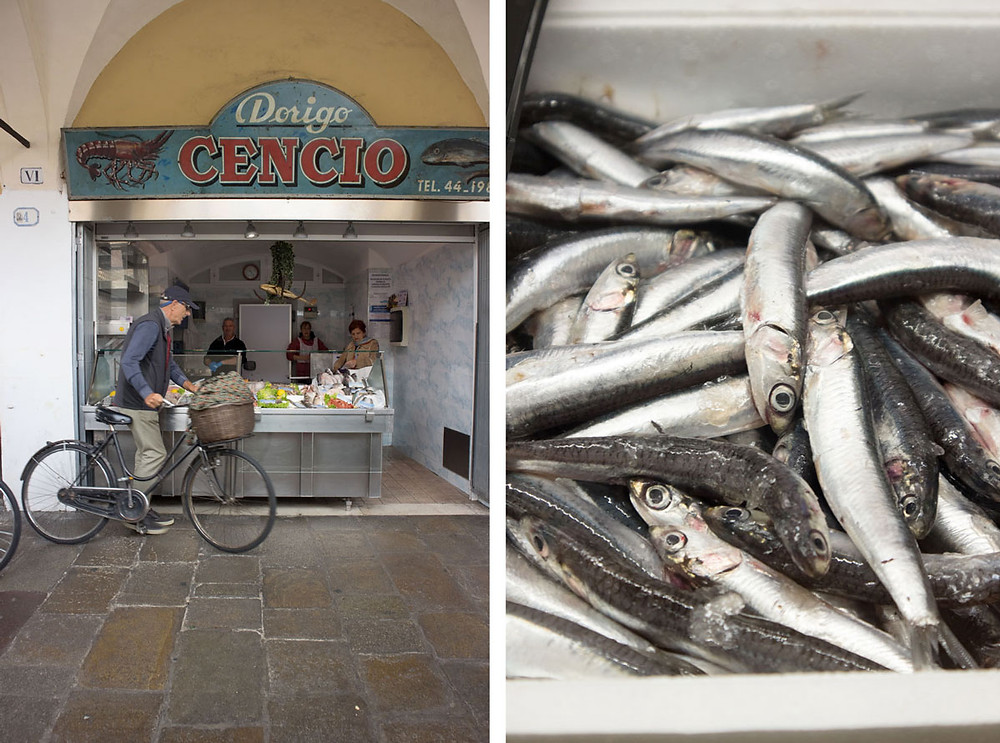 Central Market Padua | Padova