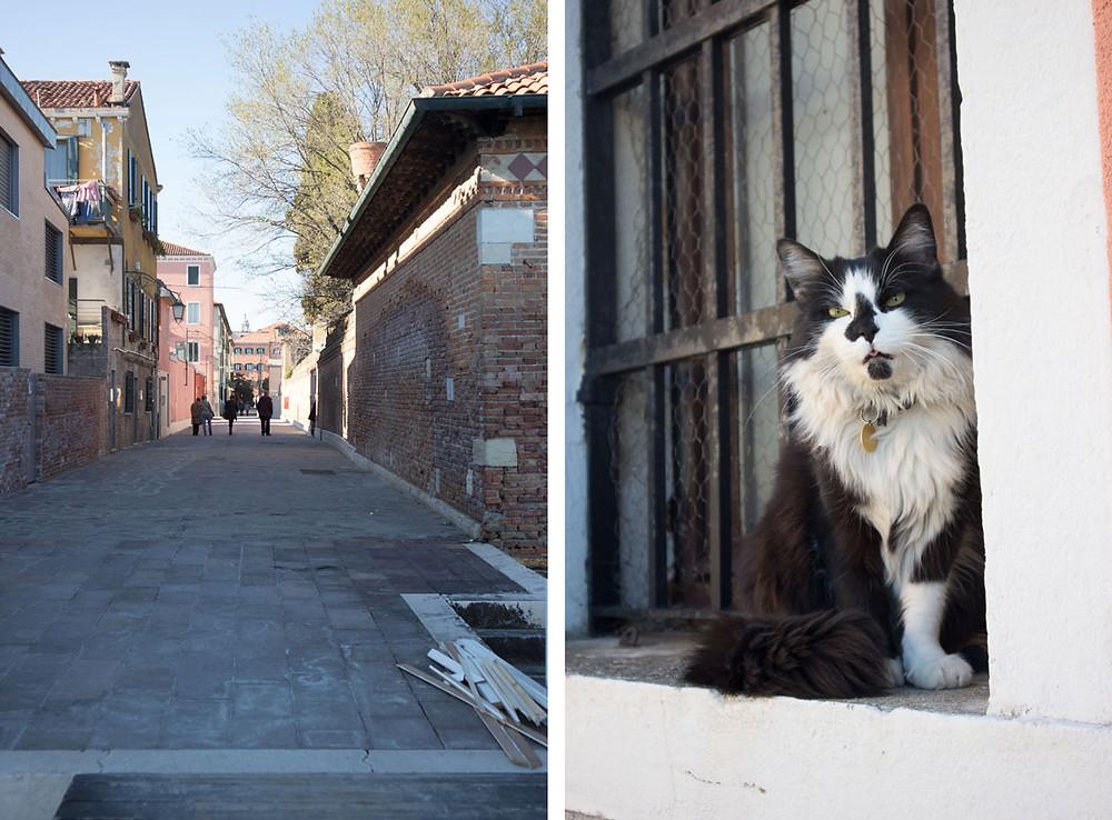Slow Travel | Venice Italy | Giudecca