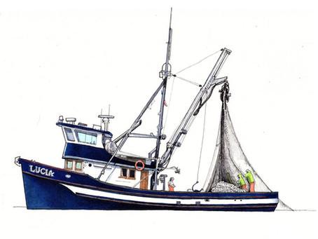 Name that Fish Boat!