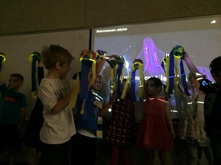 Bioluminescent Jellyfish
