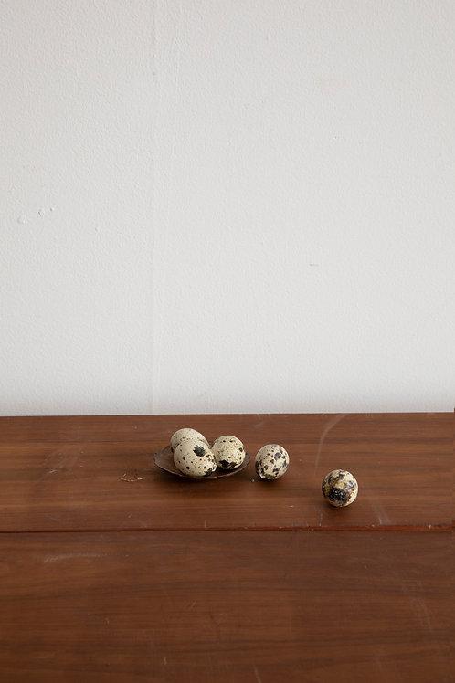 Dried Quail Eggs (set of 12)