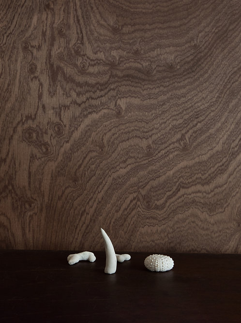 Earthen Collection (Set of 4)