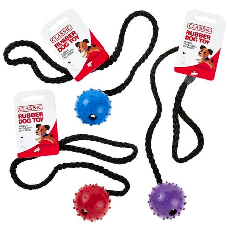 Classic Rubber Ball on a Rope