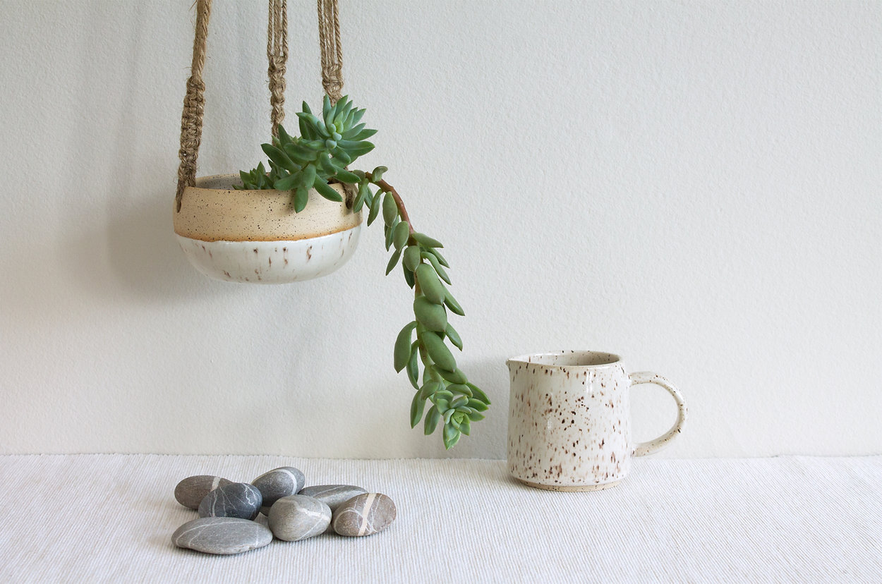 succulent with mug.jpeg