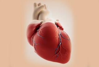 ¡Al corazón se le ocurrió ser pulmón!