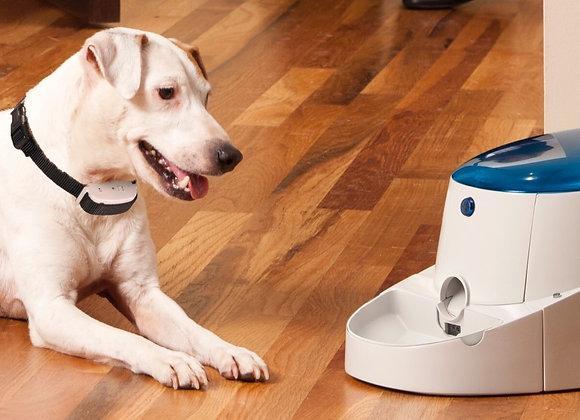 dogBARC Buddy