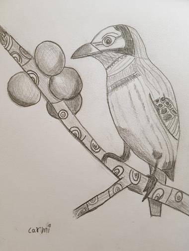 רישום בעיפרון של ציפור.jpg