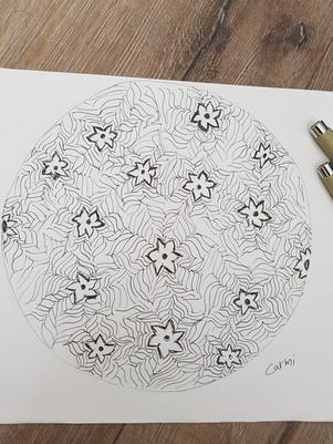 שרבוט פרחים.jpg
