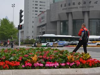 中国は公共花バブル?