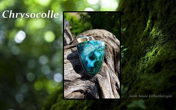 chrysocolle.jpg