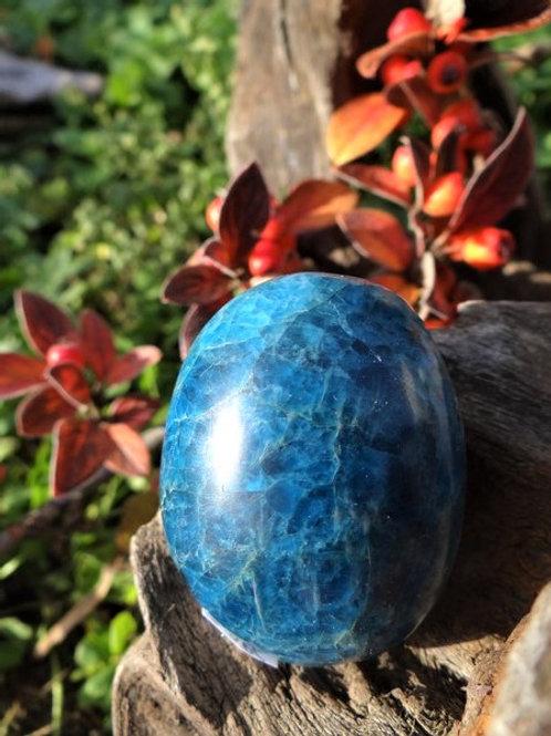 Galet d'Apatite bleue*