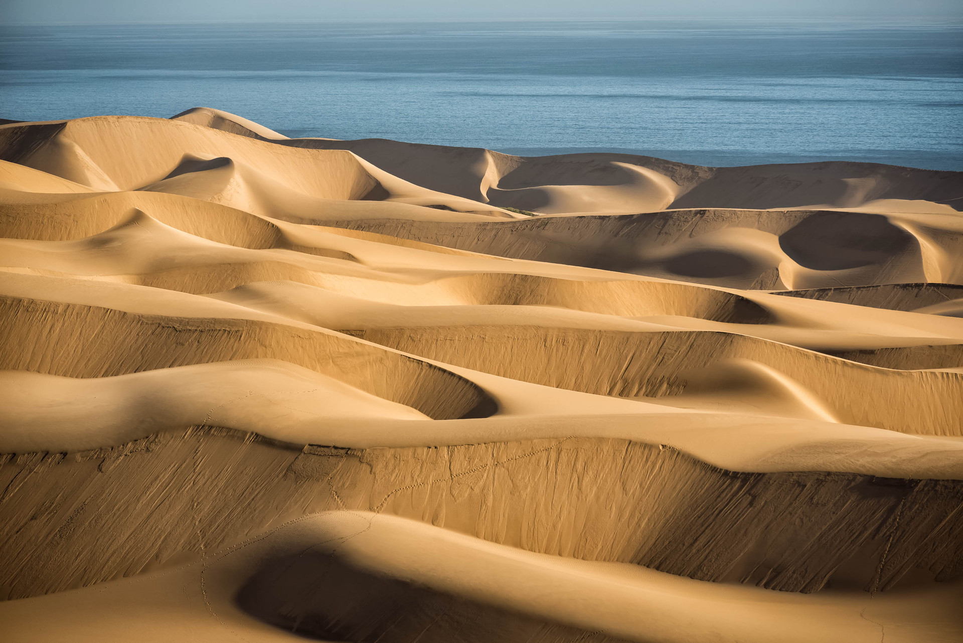 Great dunes and the sea