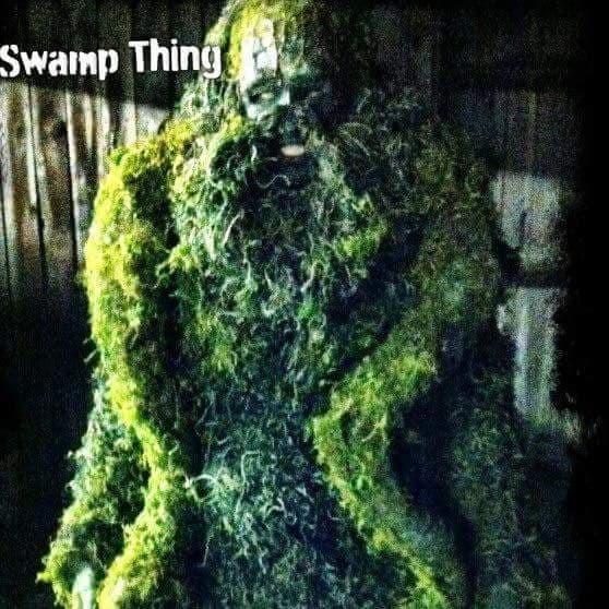 Swamp Thing - Custom Build