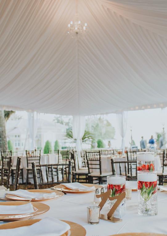 Tent Liner.jpg