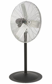 Oscillating Fan.JPG