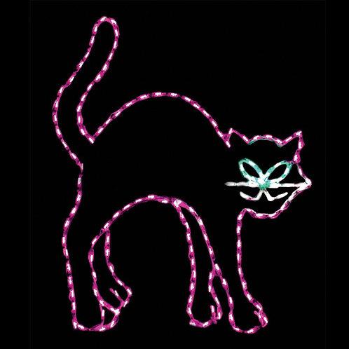 LED BLACK CAT