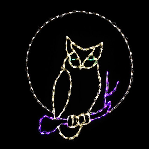 LED OWL
