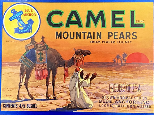 Camel Crate Label - Blue Anchor Inc.