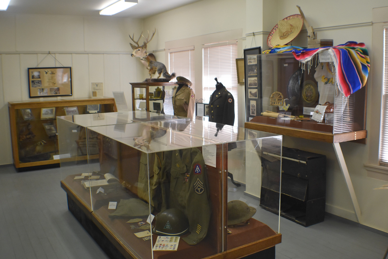 Local History and Military Display