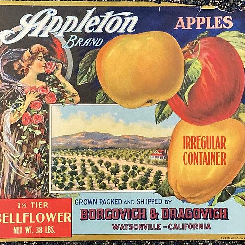 Appleton Crate Label - Borgovich and Dragovich, Watsonville