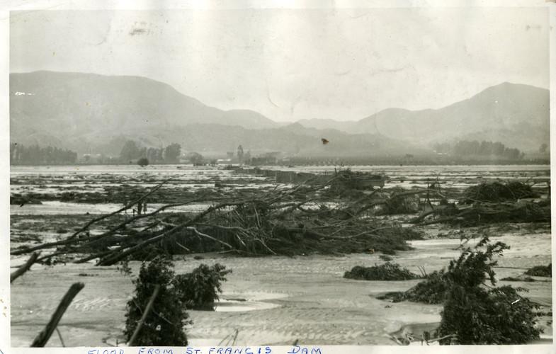 1928 St. Francis Dam - Orchard Damage