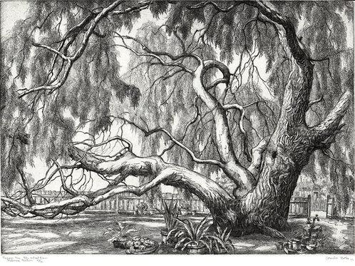 Peppertree Artist's Barn by Cornelis Botke