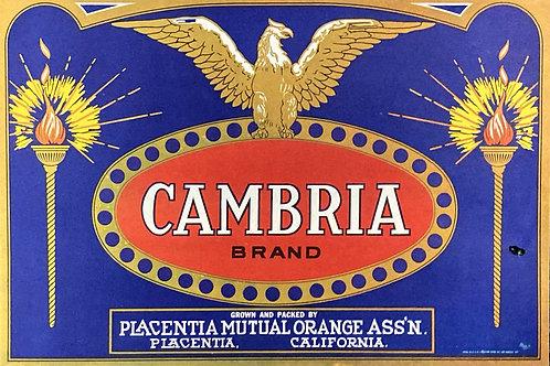 Cambria Crate Label - Placentia Mutual Orange Ass'n
