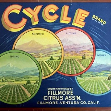 Cycle Brand Crate Label from Fillmore Citrus Association