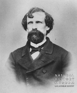 Joe Dye circa 1870.jpg