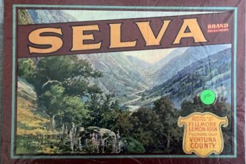 Selva Brand Crate Label from FIllmore Lemon Association