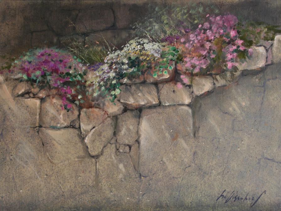 Rock-garden  England 59x40cm