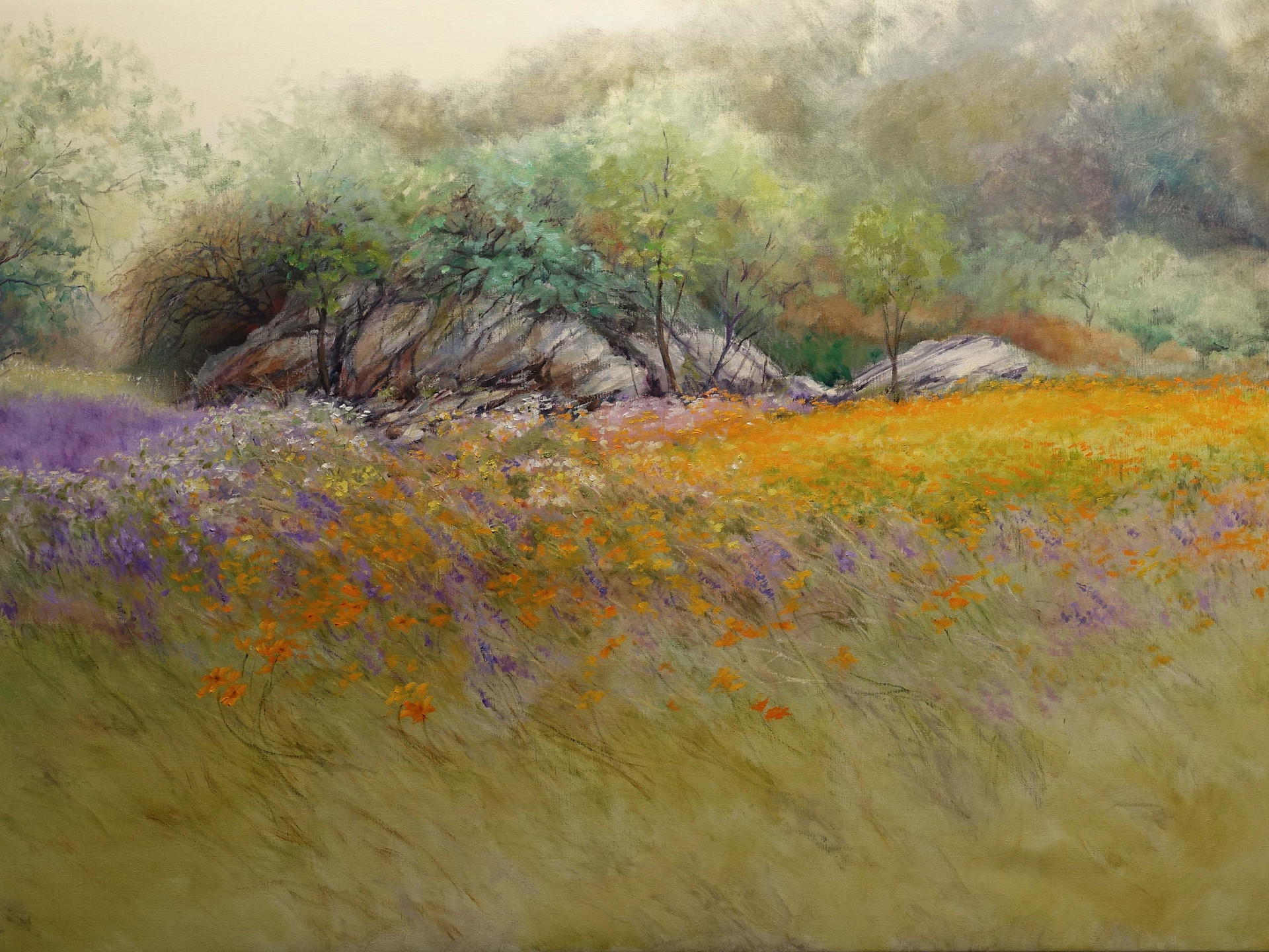 Namaqualand  flowers in the desert (1) 160x90 cm