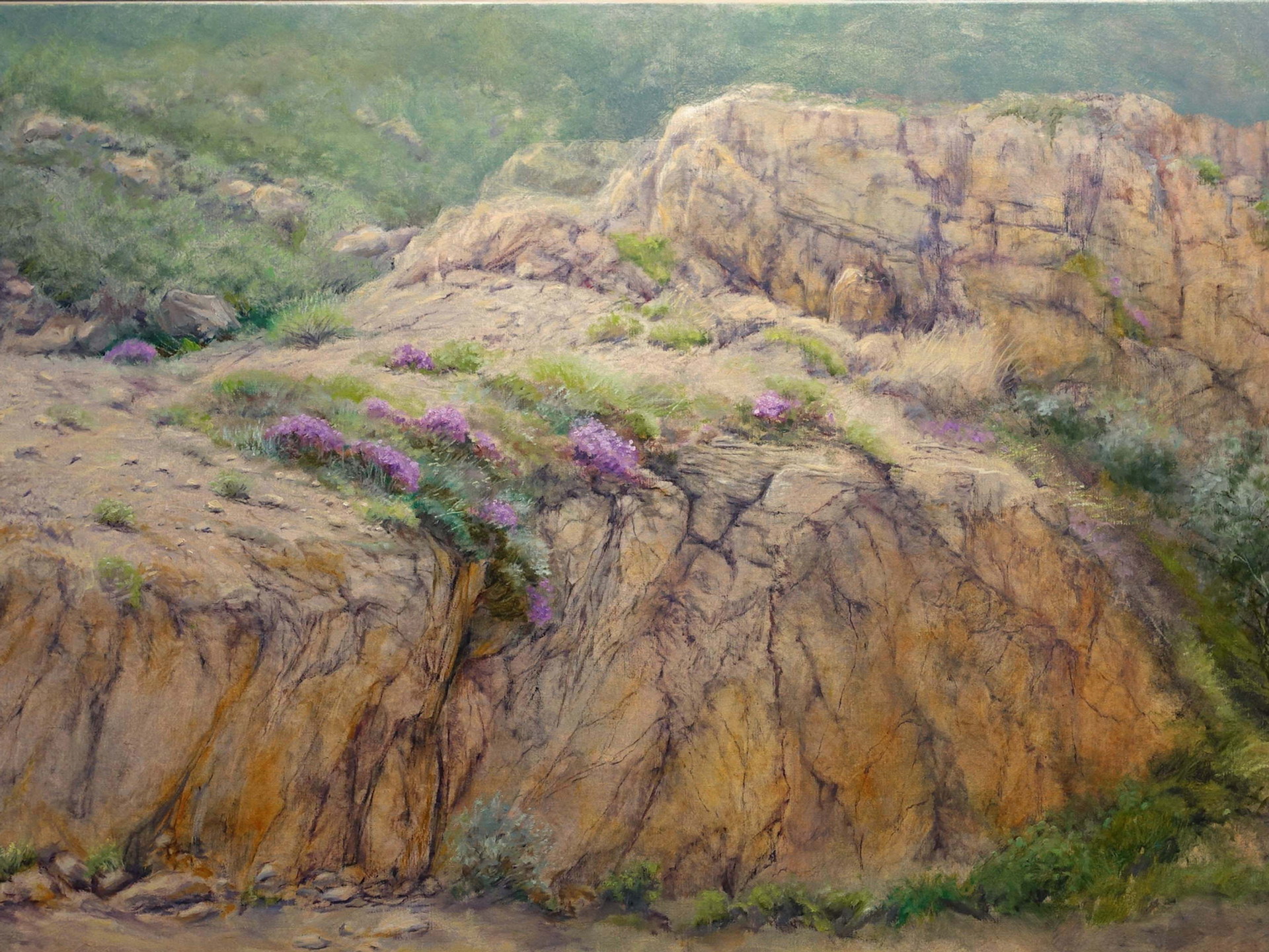 Wild beauty of Namaqualand 160x90 cm
