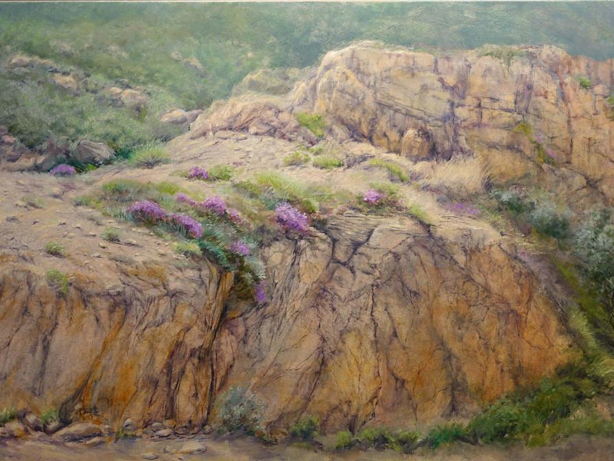 Wild beauty of Namaqualand 160x90 cm
