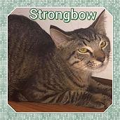 Strongbow.jpg