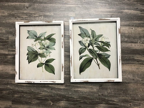 Floral Prints in Distressed White Frames