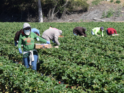 CA Assembly Passes CRLAF Sponsored Bill to Advance Worker Safety