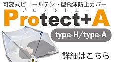 protecta_h_a.jpg