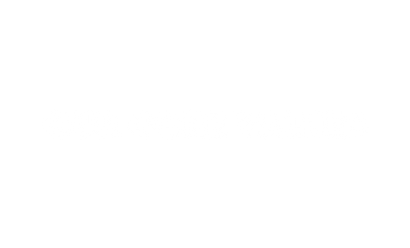 core values.png