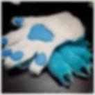 paws2.jpg