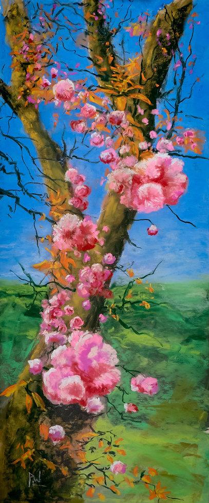 PhilipWilkinson-OldBeauty-pastel.jpeg