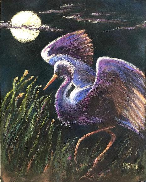 PattyBird-Moondance-pastel.jpg