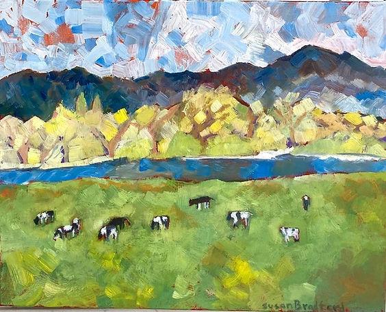 SusanBradford-Laguna de Santa Rosa-Oil.j